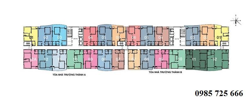 Mặt bằng tòa Trường Thành dự án Tràng An Complex - 01 Phùng Chí Kiên