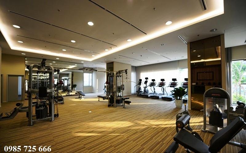 Phòng tập Gym Mulberry Lane