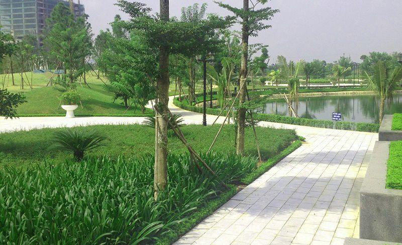 Công viên cây xanh tại dự án N02 - T1 kdt Ngoại Giao Đoàn
