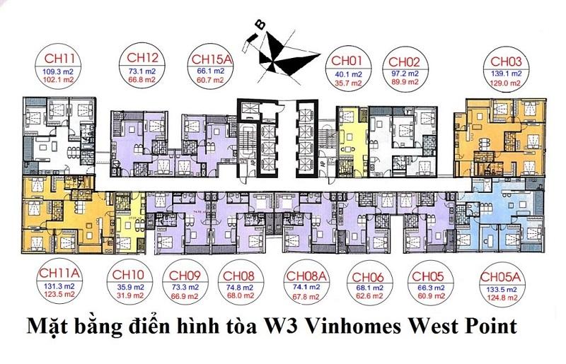 Mặt bằng tòa W3 Vinhomes West Point Đỗ Đức Dục
