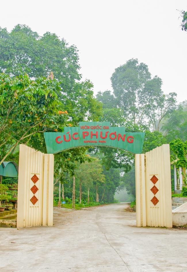 Cổng rừng quốc gia Cúc Phương cạnh dự án Vedana Cúc Phương Resort - Ninh Bình