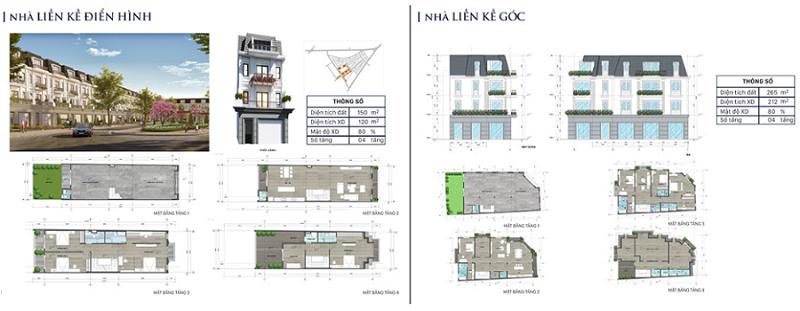 Thiết kế nhà liền kề dự án Eco City Premia Buôn Ma Thuột