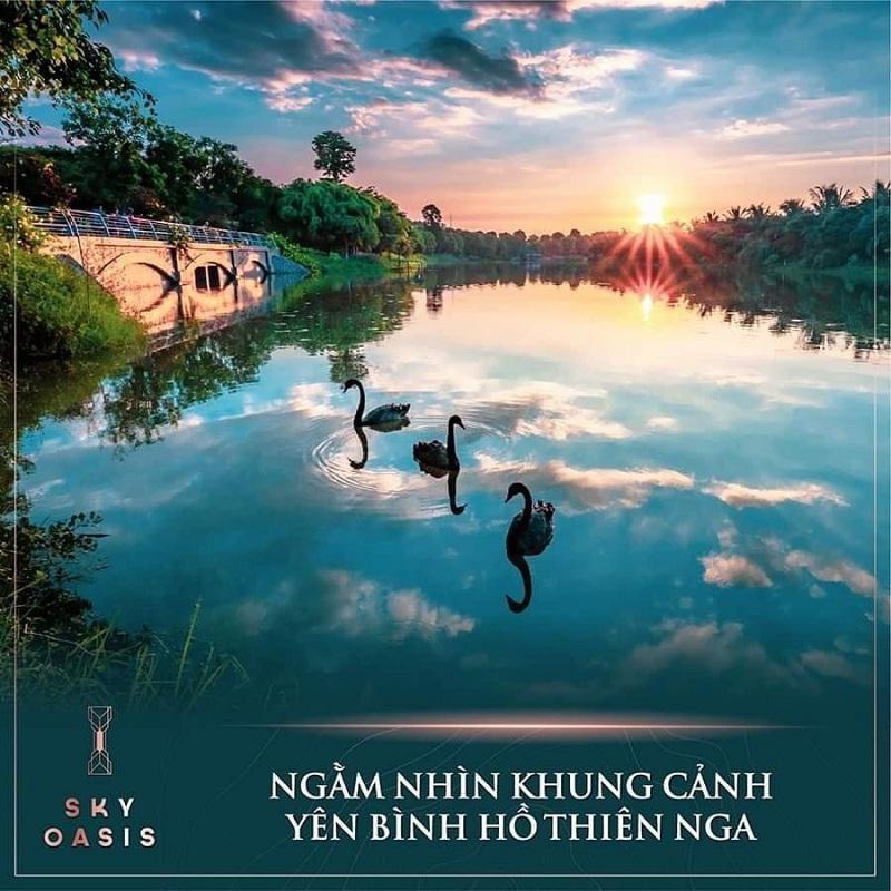 Tiện ích Hồ Thiên Nga Sky Oasis KĐT Ecopark