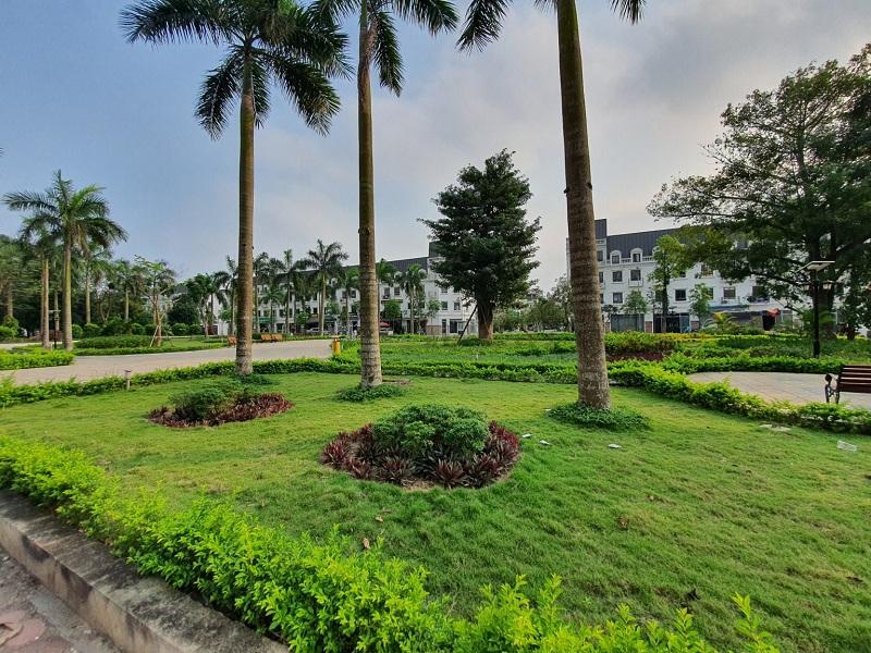 Khuôn viên cây xanh Lacasta Tower Văn Phú - Hà Đông 1
