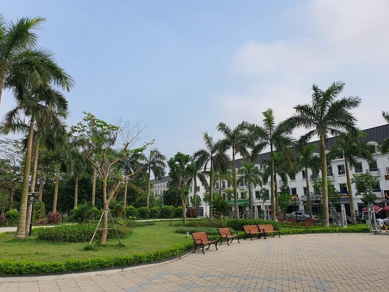 Khuôn viên cây xanh Lacasta Tower Văn Phú - Hà Đông 3