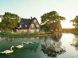Phối cảnh 2 tiểu khu biệt thự Làng Hà Lan Ecopark