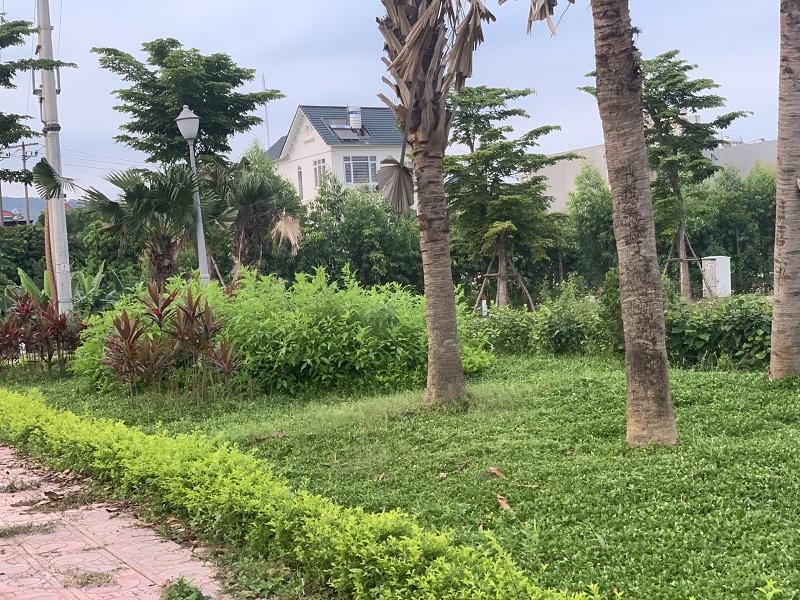 Hình ảnh thực tế 5 dự án Central City Lạc Trung - Uông Bí