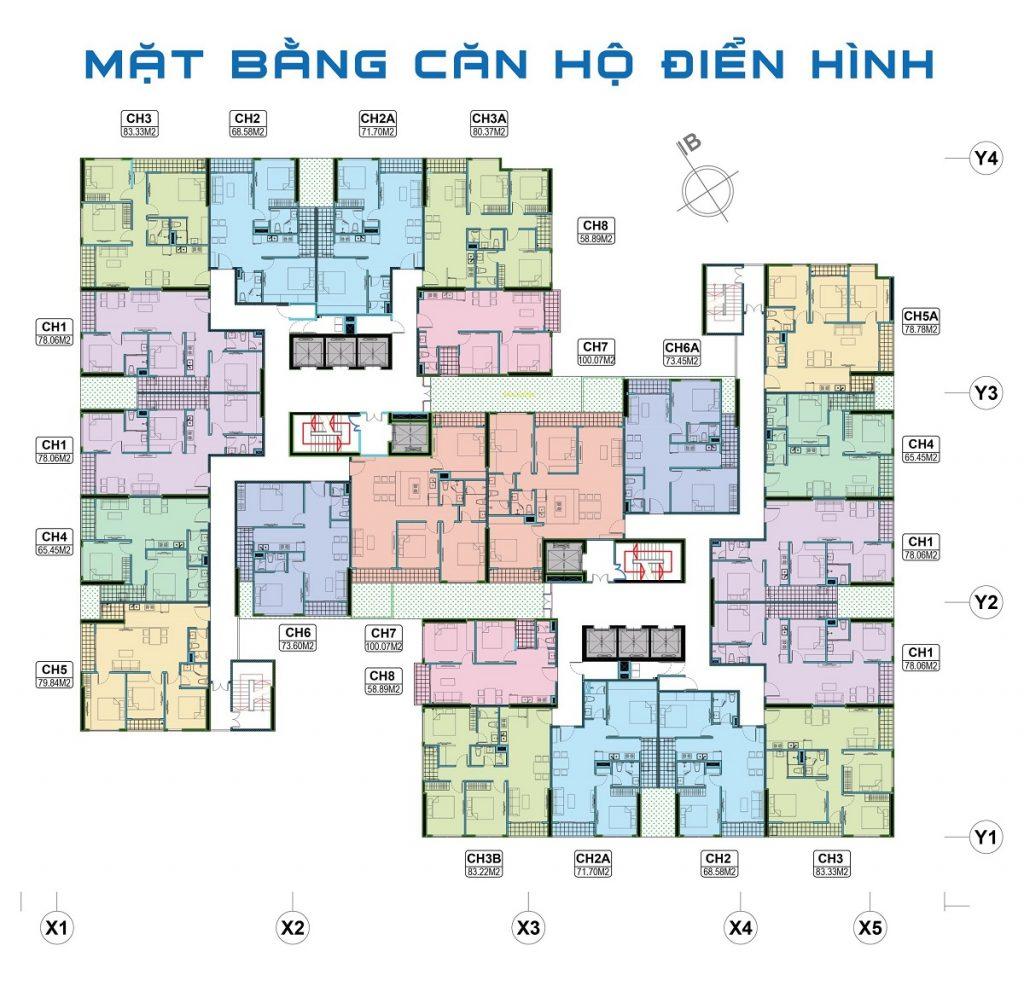 Mặt bằng căn hộ chung cư The 5 Degrees Phố Cúc Ecopark - An Phú