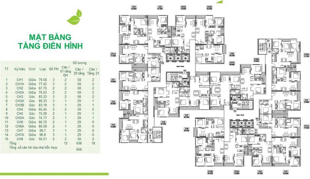 Mặt bằng kỹ thuật chung cư The 5 Degrees Phố Cúc Ecopark - An Phú